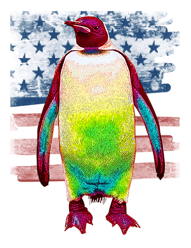 Penguin T Shirt American Flag