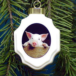 Pig Christmas Ornament Porcelain