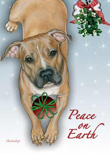 Pit Bull Terrier Christmas Cards