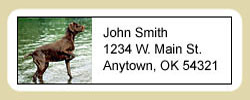 Pointer Address Labels