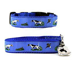Pointer Collar & Leash