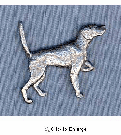 Pointer Pin