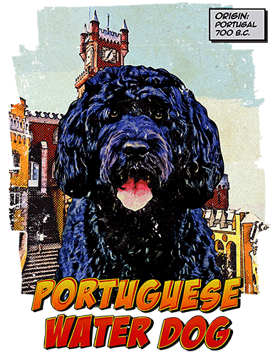 Portuguese Water Dog T-Shirt Ancestry