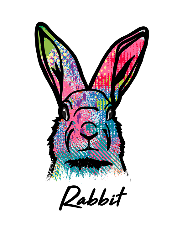 Rabbit T Shirt Colorful Abstract