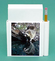 Raccoon Hold-a-Note