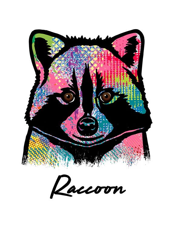 Raccoon T Shirt Colorful Abstract