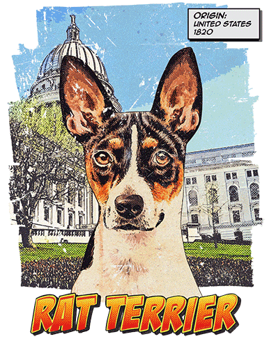 Rat Terrier T-Shirt Ancestry