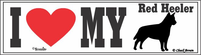 Red Heeler Bumper Sticker I Love My