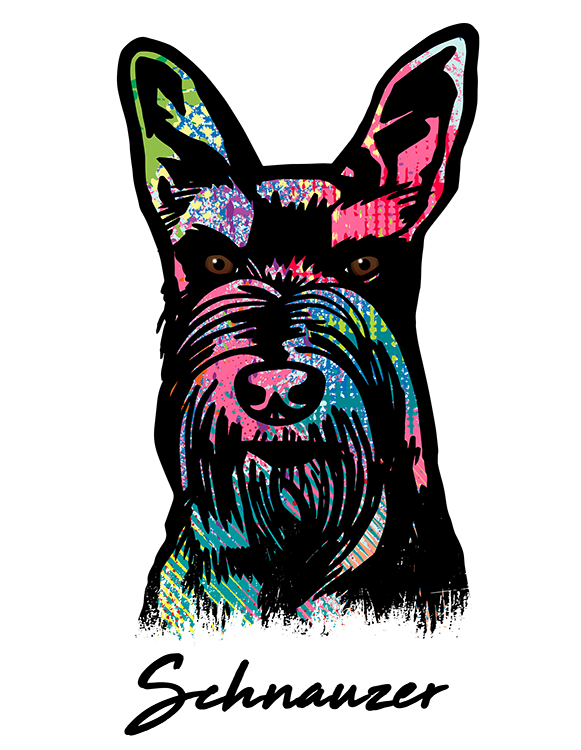 Schnauzer Cropped T Shirt Colorful Abstract