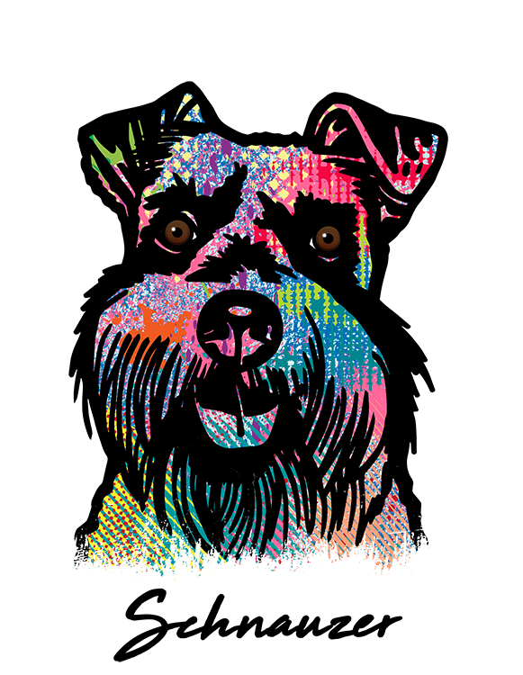 Schnauzer T Shirt Colorful Abstract