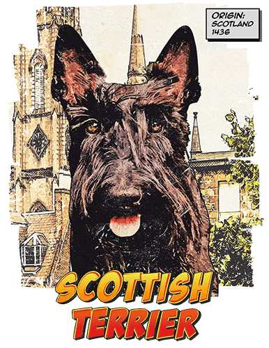 Scottish Terrier T-Shirt Ancestry