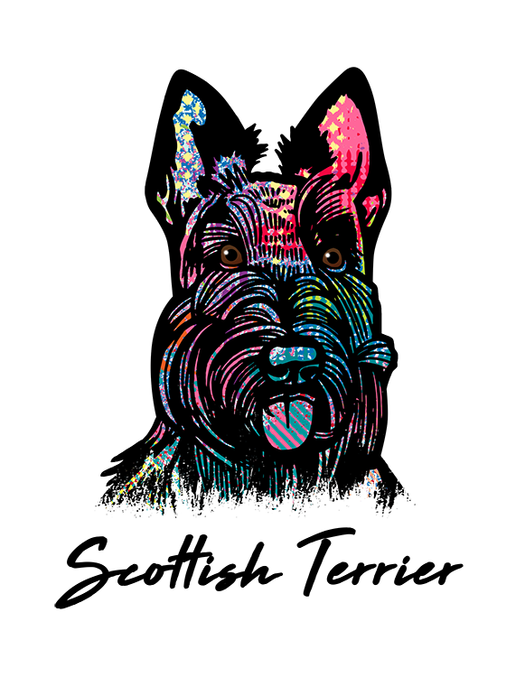 Scottish Terrier T Shirt Colorful Abstract