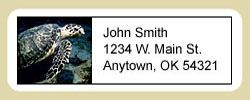 Sea Turtle Address Labels