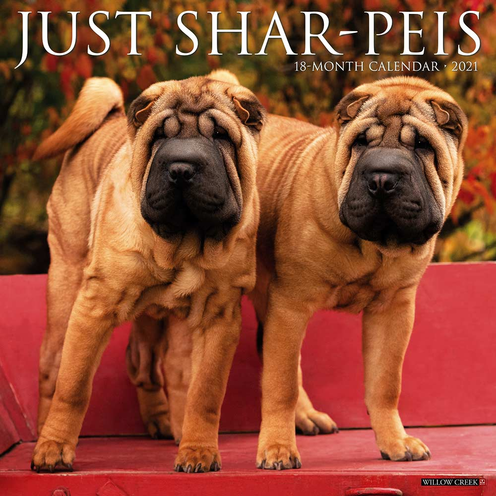 Shar Pei Willow Creek Calendar
