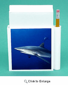 Shark Hold-a-Note