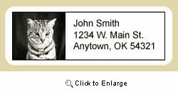 Shorthair Cat Address Labels