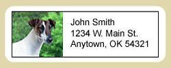 Smooth Fox Terrier Address Labels