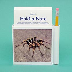 Spider Hold-a-Note