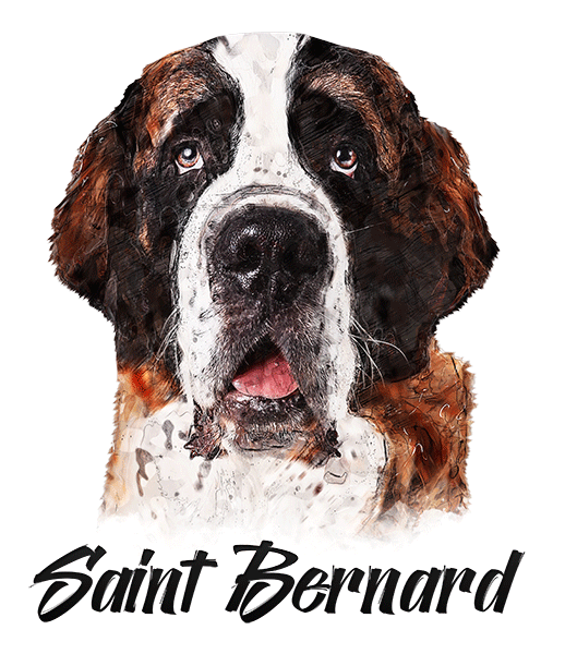 St. Bernard T-Shirt - Vivid Colors