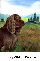 Sussex Spaniel Garden Flag