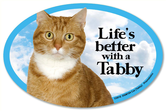Tabby Cat Car Magnet - Life's Better