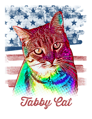 Tabby Cat T Shirt American Flag
