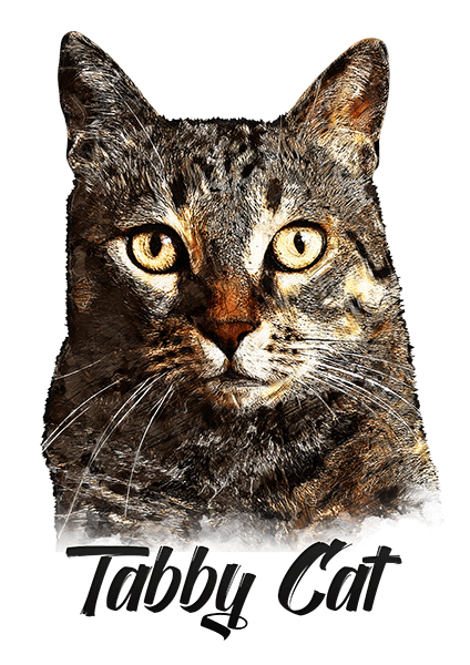Tabby Cat T-Shirt - Vivid Colors