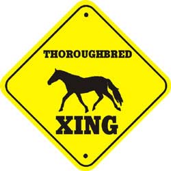 Thoroughbred Horse Crossing