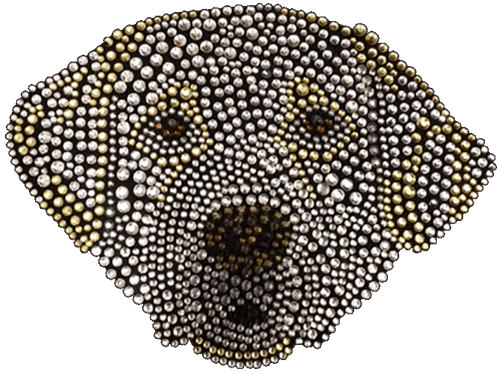 Yellow Lab T-Shirt Rhinestone-Rhinestud