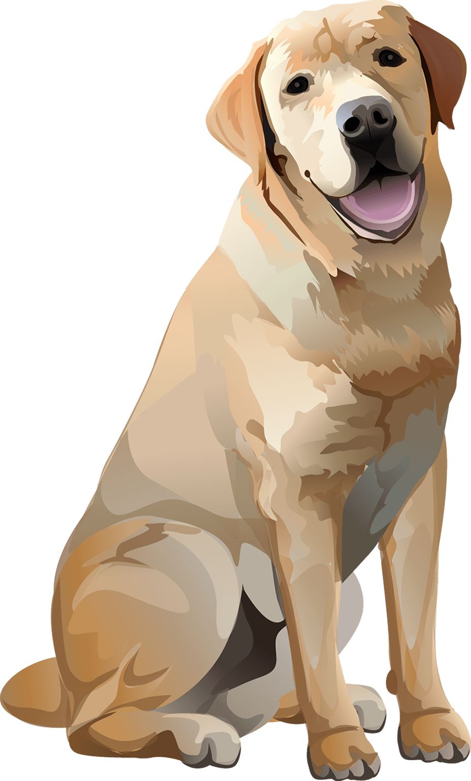 Yellow Lab T-Shirt - Vibrant Vector