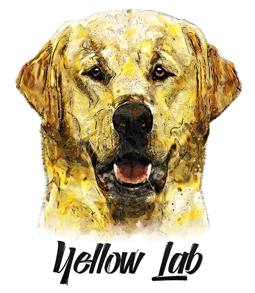 Yellow Lab T-Shirt - Vivid Colors