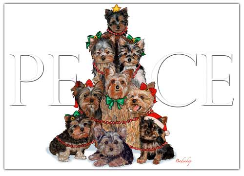 Yorkshire Terrier Christmas Cards Peace