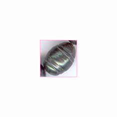 Pearl: Gray Oval with Lines<br>4x8 mm