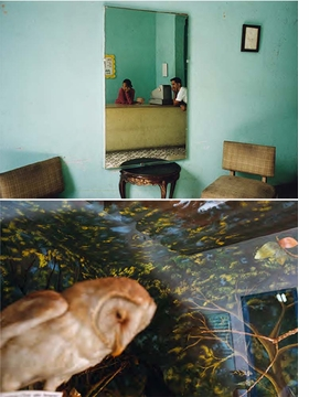 Featured images are reproduced from 'Alex Webb and Rebecca Norris Webb: Slant Rhymes.'