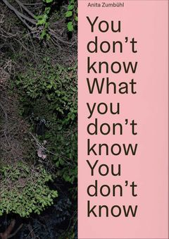 Anita Zumbühl: You Don't Know What You Don't Know You Don't Know
