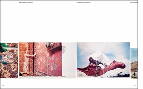 Spread from 'Archive Species.'