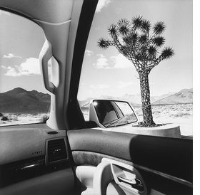 """Above: Lee Friedlander, """"California"""" (2008), from the <I>America by Car</I> series."""