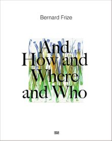 Bernard Frize: And How and Where and Who