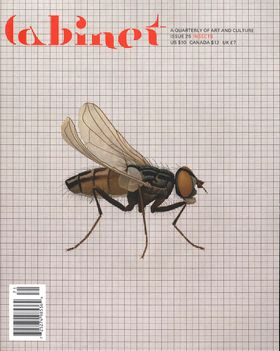 Cabinet 25: Insects