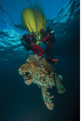 Featured image is reproduced from 'Damien Hirst: Treasures from The Wreck of the Unbelievable.'