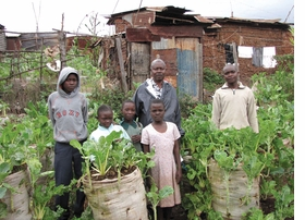 """Featured image, of Solidarités International's Garden-in-a-sack program, is reproduced from <a href=""""http://www.artbook.com/9780910503839.html"""">Design with the Other 90%: Cities</a>."""
