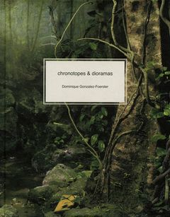 Dominique Gonzalez-Foerster: Chronotopes & Dioramas