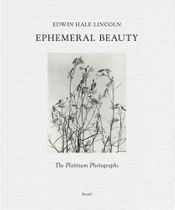 Edwin Hale Lincoln: Ephemeral Beauty