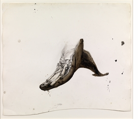 Featured image is reproduced from 'Ellen Gallagher: Accidental Records.'
