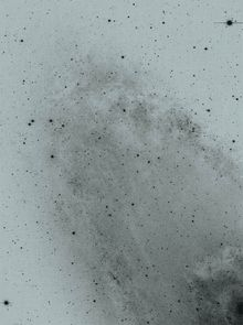Florian Schwarz: A Handful of Dust