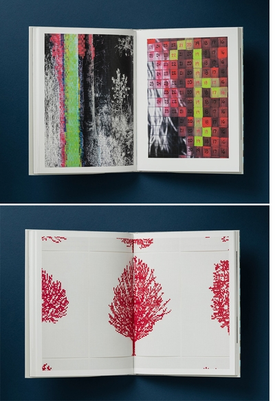 Graphing living matter: 'Charles Gaines: Palm Trees and Other Works'