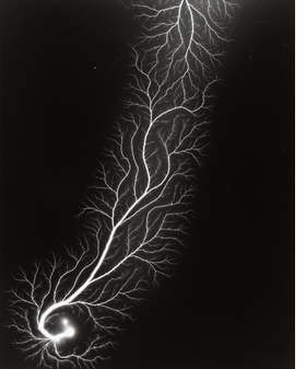 Featured image is reproduced from <i>Hiroshi Sugimoto: The Long Never</i>.