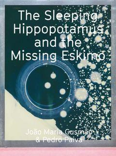 João Maria Gusmão & Pedro Paiva: The Sleeping Hippopotamus and the Missing Eskimo
