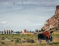 Joan Myers: Where the Buffalo Roamed