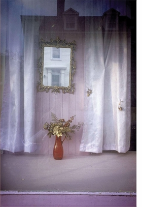 Featured image is reproduced from 'Joel Meyerowitz: Wild Flowers, Limited Edition'.